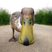 DuckLord92